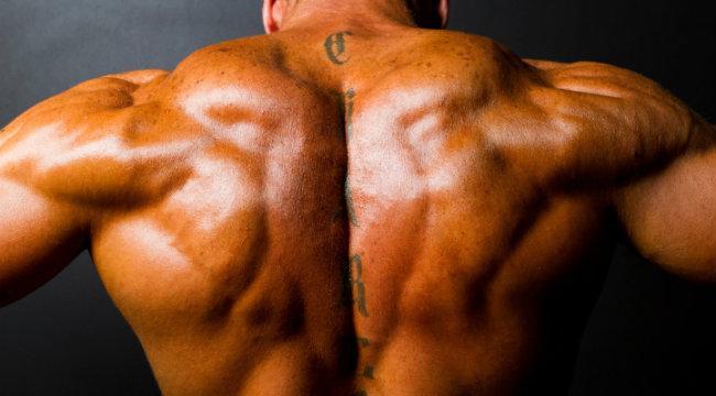 Tăng sức mạnh phần lưng trên