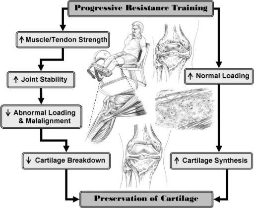 Progressive - Resistance Training