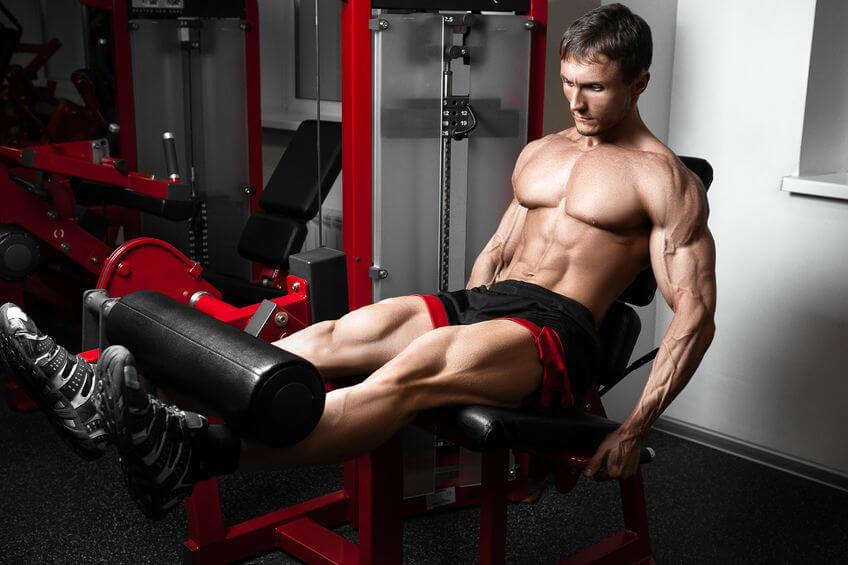 leg extension là một bài tập dạng isolation exercise