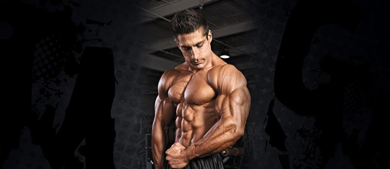 Testosterone-là-một-loại-hormone-đồng-hóa-có-thể-thúc-đẩy-cơ-bắp-phát-triển