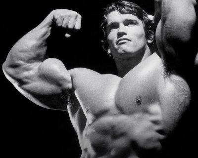 Arnold's Bodybuilding for Men (Tiếng Việt)